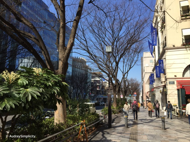 Streets of Harajuku
