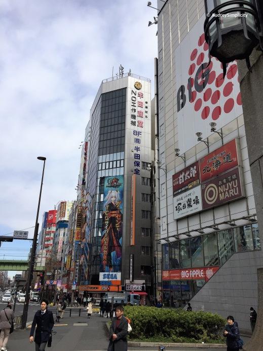 Street of Akibara