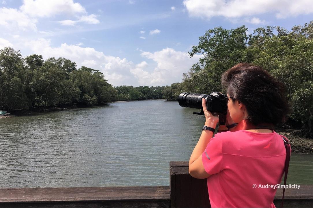 At Sungei Buloh Wetland Reserve
