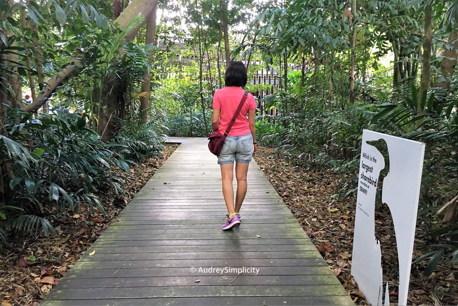 Entering Sungei Buloh Wetland Reserve