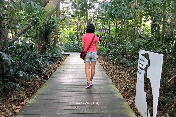 Entering Sungei Buloh Wetland Reserve