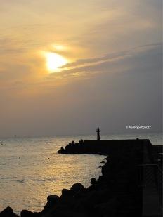 Taiwan Fishermen's Wharf