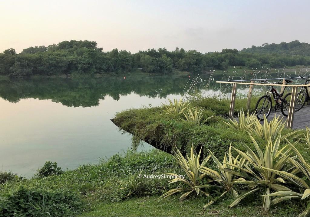 Lorong Halus Punggol Park