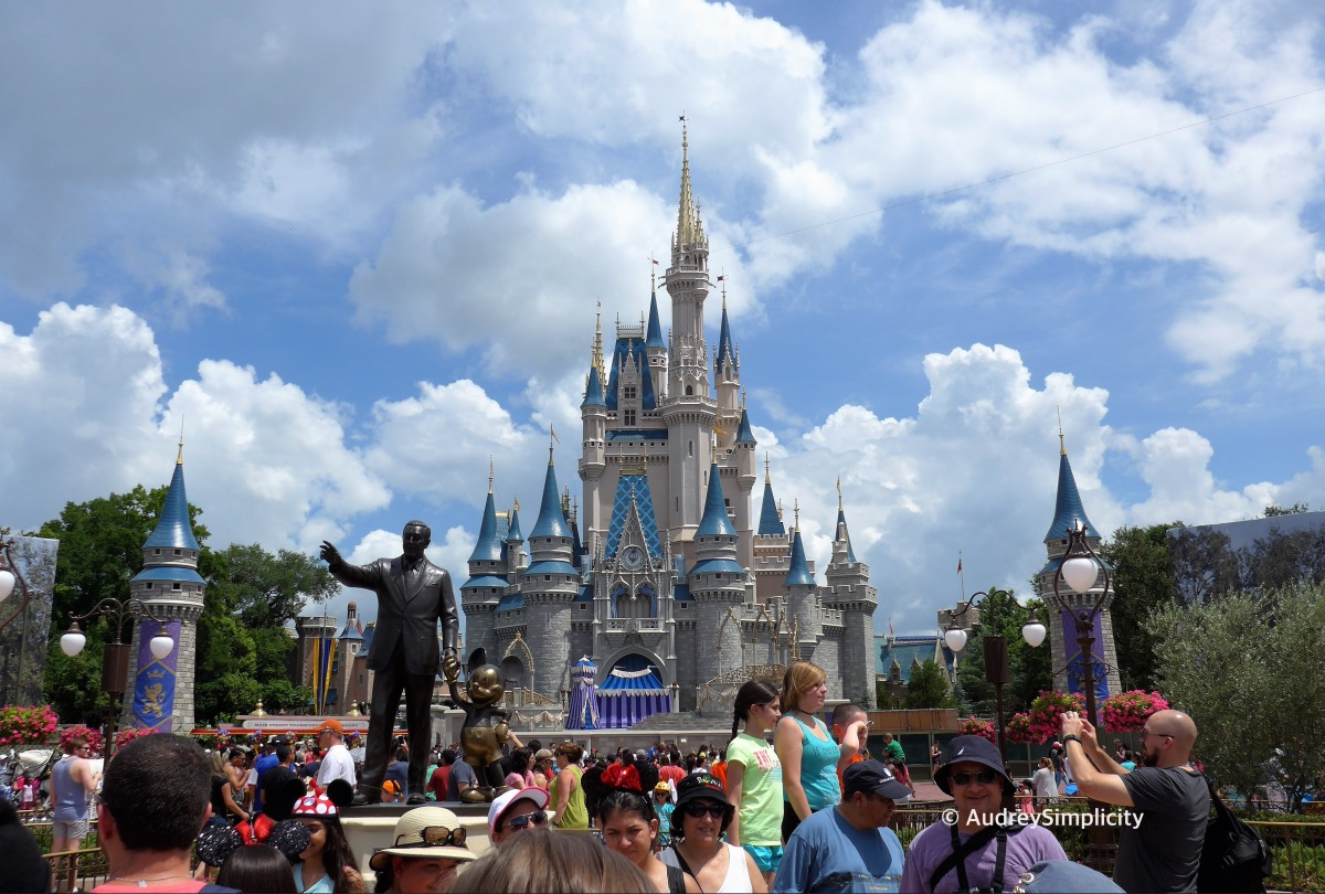 Magical Experience Building Lego Cinderella Castle