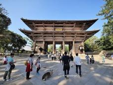 Nara by AudreySimplicity