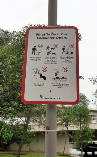 What to do if Encounter Otters Signage