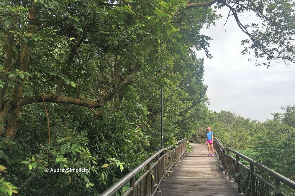 kent-ridge-canopy-walk-img_2770