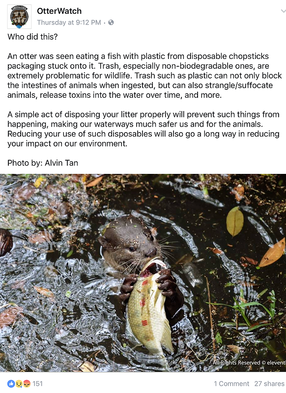 OtterWatch Post 16022017.png