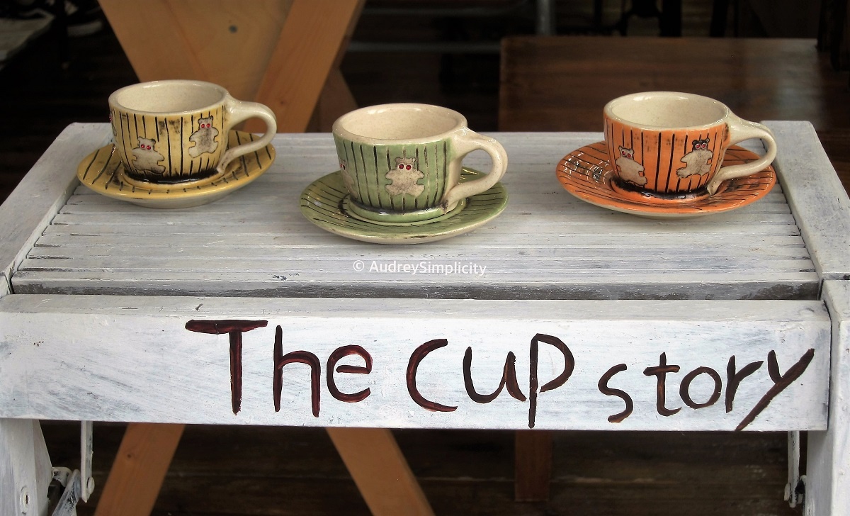 the-cup-story