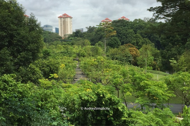 view-from-kent-ridge-canopy-walk-img_2767