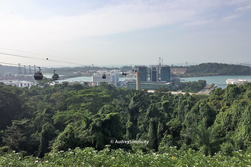 view-from-mount-faber-img_2765