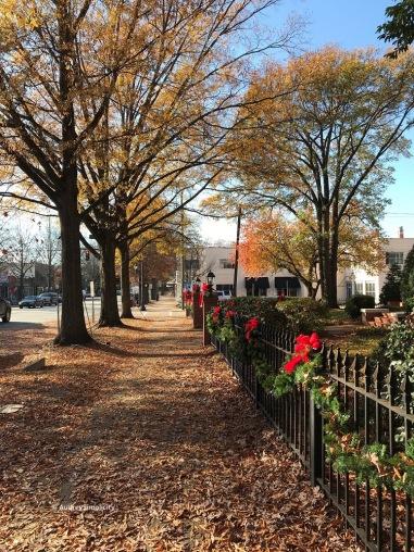Autumn in Raleigh