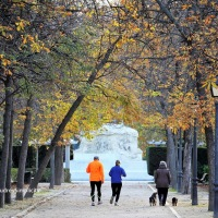 Wordless Wednesday in Madrid - Week 41