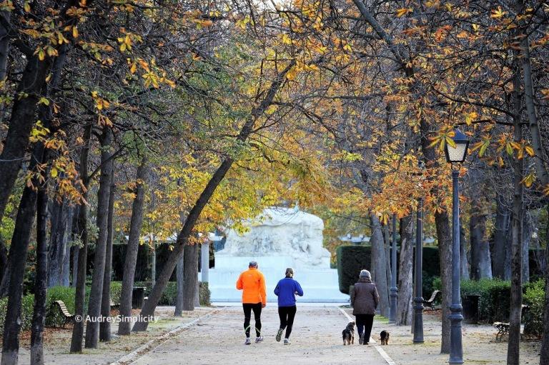 Autumn in Madrid.JPG