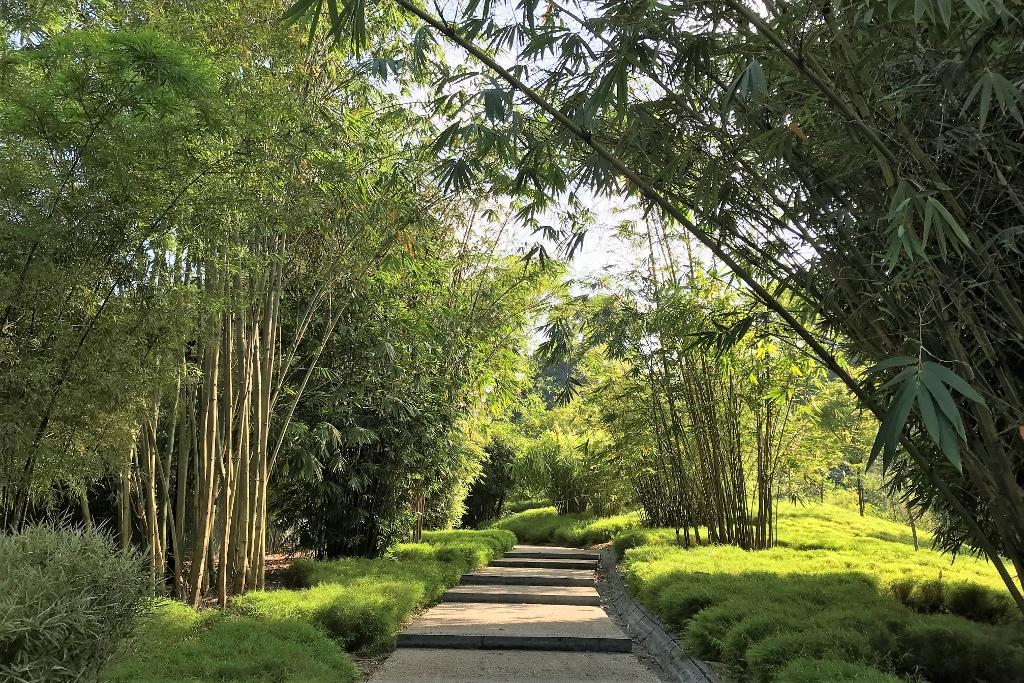 Singapore Botanic Gardens UNESCO World Heritage Site
